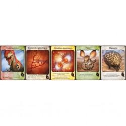 Evolution - extension Cartes