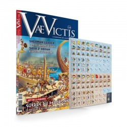 Vae Victis n°139 game edition