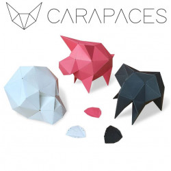 Carapaces by Doug - White