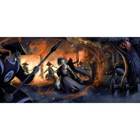 Qin - ecran Shaolin et Wudang