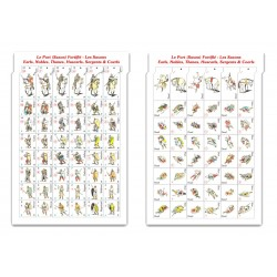 Guiscard-Diex Aïe - 3 Saxons countersheets